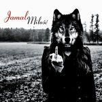 ROCKOWE KONCERTY 2014: Jamal - gdzie zagrają w 2014? Sprawdź listę koncertów [VIDEO]