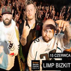 Orange Warsaw Festival 2014 - dzień 3, FESTIWAL WARSZAWA