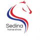 Sedina Horse Show Szczecin, Stadion przy ulicy Bandurskiego, Szczecin