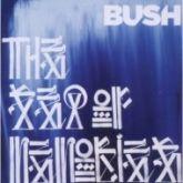 Bush - powrót po latach