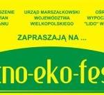 Noc Świętojańska 2010, LIDO w Antoninie k.Ostrowa Wielkopolskiego, Antonin