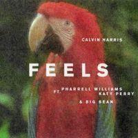 Feels - Calvin Harris, Katy Perry, Pharrell Williams, Big Sean