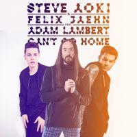 Can't Go Home - Steve Aoki, Felix Jaehn, Adam Lambert