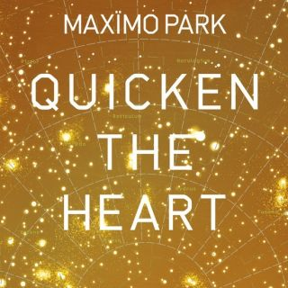The Kids Are Sick Again - Maximo Park