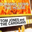 Burning Down The House - Tom Jones, The Cardigans