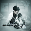 Invisible - Skylar Grey