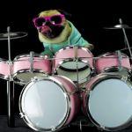 Metallica: MOPS lepszym perkusistą niż Lars Ulrich?! Zobacz video!